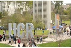 Foto Centro Advance Business School Brasil