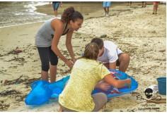 Foto Centro Instituto Sea Shepherd Brasil